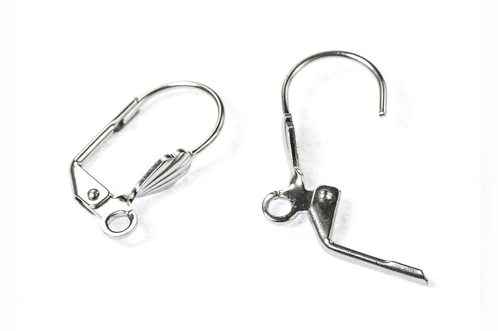 Leverback Earwires - 18mm Stainless Steel