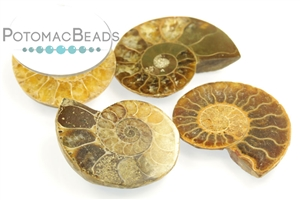 Other Beads & Supplies / Natural Beads and Miscellaneous