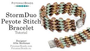 How to Bead Jewelry / Beading Tutorials & Jewel Making Videos / Bracelet Projects / StormDuo Peyote Stitch Tutorial