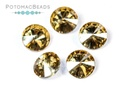 Potomac Crystal Rivoli - 8mm Gold Champagne (Pack of 5)